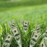 Новые финансы — ставки на Весну